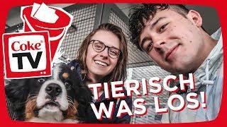 Tierisch was los, mit Rob und Annika!   #CokeTVBucketlist