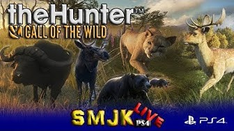 Odkrywamy mapę theHunter Call of the Wild PS4 Pro PL LIVE 17/03/2020