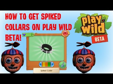 play wild beta download for computer