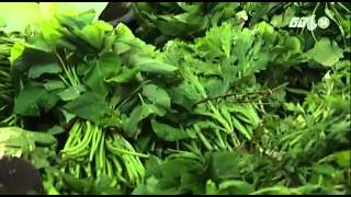 VTC14_Hà Nội: Giá rau xanh đắt ngang thịt cá