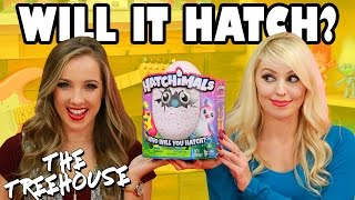 Hatchimals on The Treehouse Show for Kids with Harley Quinn. Totally TV from Disney Toys Fan.