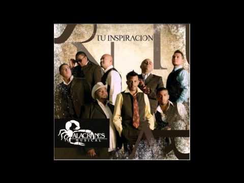 Donde Esta ~ Alacranes Musical
