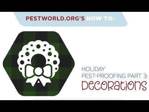 Holiday Pest-Proofing Part 3: Decorations