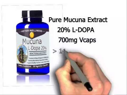 Mucuna pruriens Review - L-Dopa - A Superfood and Ayurvedic Herb