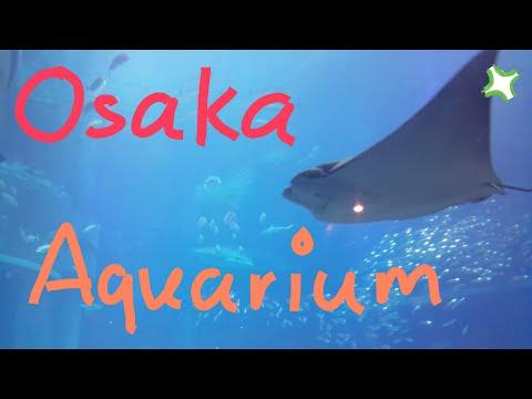 Osaka Aquarium Kaiyukan [海遊館]
