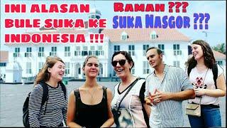 Alasan Bule Suka Ke Indonesia !!! Karena Nasi Goreng ????