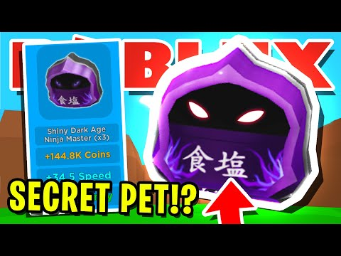 THIS NEW *SECRET* PET IS NOT SUPPOSED TO BE IN ROBLOX MAGNET SIMULATOR!! [UPDATE 16]