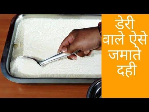 हलवाई वाले ऐसे जमाते है गाढ़ा मलाईदार दही - how to make curd at home - dahi recipe - curd