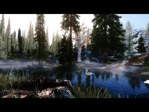 We Got it! - Skyrim:SE 2018 Next Gen Graphics! - 400+ Mods (1440p 60fps)