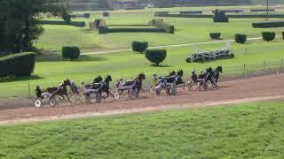Vidéo de la course PMU PRIX DE DOMDIDIER