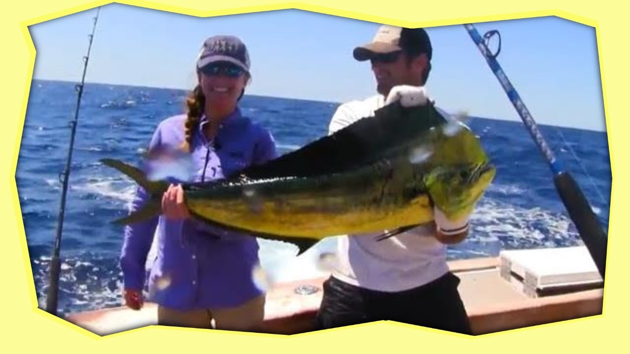 Offshore fishing morehead city nc youtube for Deep sea fishing nc