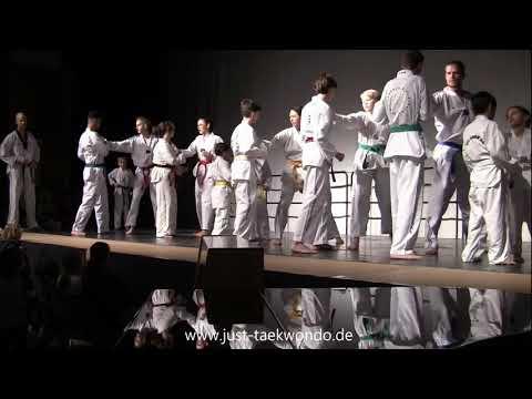 just Taekwondo performs at open day at International School of Hamburg 17.11.2018 - Best of