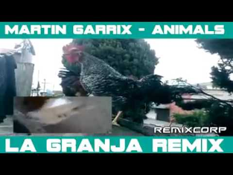 Real martin Garrix-- animal trance video must watch!!!