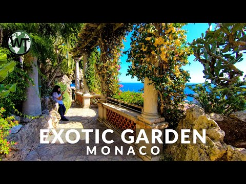 Jardin Exotique Garden And Cave - 🇲🇨 Monaco - 4K Virtual Tour