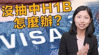 沒抽到H1B怎麼辦?三大方法繼續留在美國