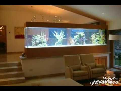 Macam Macam Bentuk Aquarium Cantik Dan Mengesankan