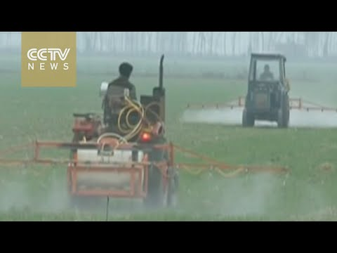 [V观] China's Minister of Agriculture stresses farmers' incomes and welfare