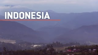 At the heart of the action : Indonesia
