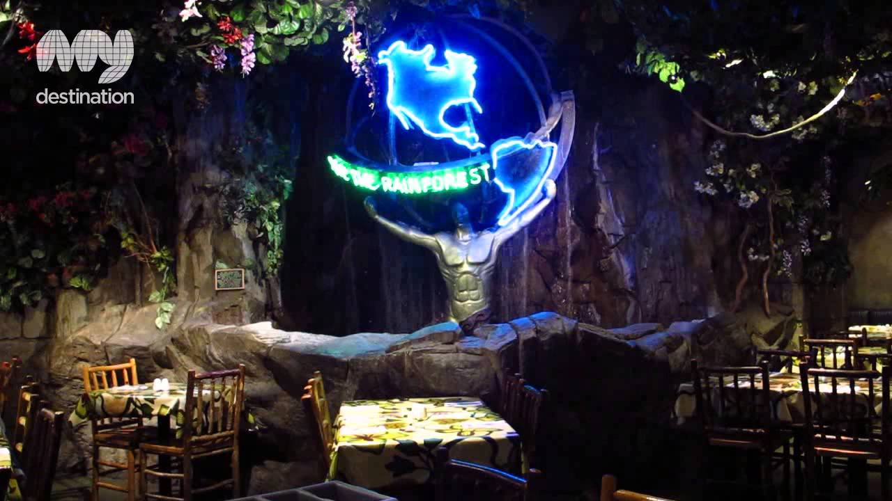 The rainforest cafe london youtube for Rainforest londra