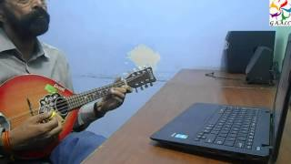 Mandolin Lessons Online Beginners Classes Trainer Instructor Skype Carnatic Music Guru Teacher India