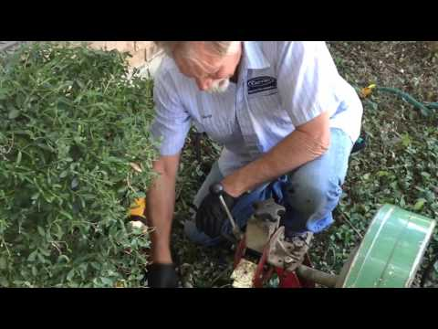 Sewer Line Services in Plano