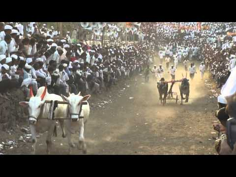Bailgada Tiranga Dhaba Nitin Bhalerao Final.MP4