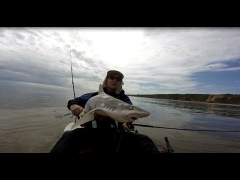 Fishing For North Norfolk Smooth Hounds