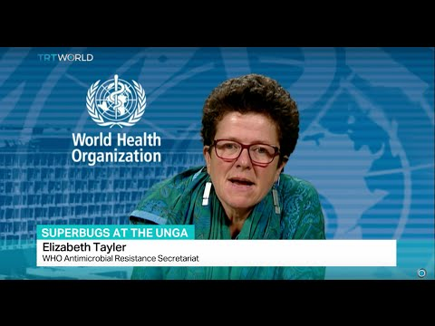 Superbugs at the UNGA: Interview with Elizabeth Tayler from WHO