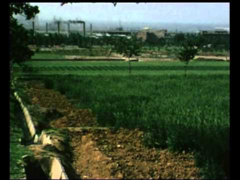 China Agriculture 1975