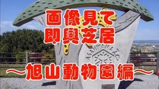 即興芝居~旭山動物園編~