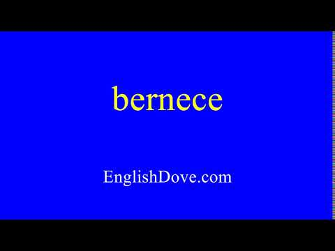 How to pronounce bernece in American English.