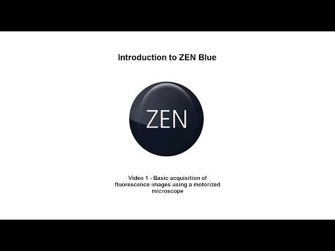 ZEN Blue - Tutorial 1 - Introduction