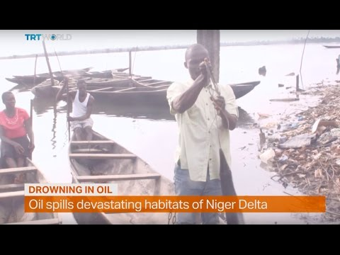 Money Talks: Oil spills devastating habitats of Niger Delta