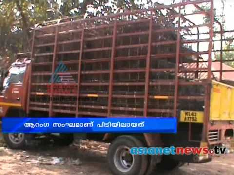 Waste Dump In River News Chuttuvattom Th Feb
