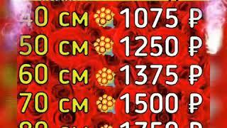 Сравнить цены на цветы розы по акции в Тюмени