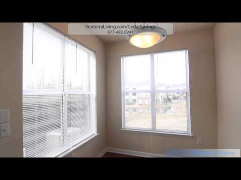 Cedar Springs Apartments In Raleigh, Nc  1 Bedroom Tour Bartlett