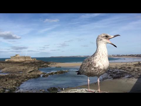 "Saint-Malo/Le Mont St-Michel/Dinard Präsentation auf die ""Bretagne"""