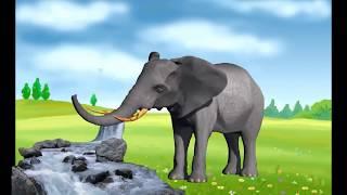 Изучаем звуки животных и их голоса для самых маленьких. Развивающие мультики для детей