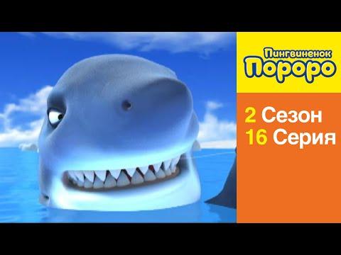 Сны и сонники об акулах. Что означает акула во сне.