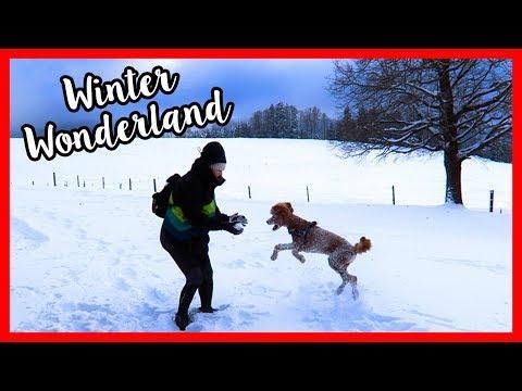 Winter Wonderland in Switzerland | VLOGMAS