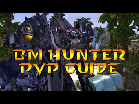 Warlords of Draenor - 6.0.3 Lvl 100 Beast Mastery Hunter PvP Guide: Stats, Spec, Glyphs & Rotation