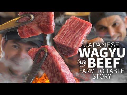 Japanese Wagyu Beef Story (from Farm to Table)  ONLY in JAPAN