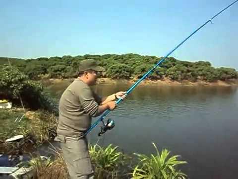 Fishing viet nam   Câu LB câu cá phao màu hồng