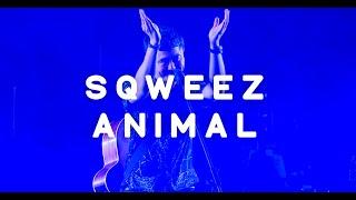 SQWEEZ ANIMAL @CAT EXPO 6