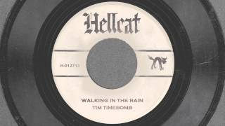 Walkin in the Rain - Tim Timebomb and Friends