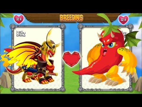 Dragon City: New Flame Dragon vs Spicy Dragon [EXCLUSIVE ...
