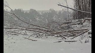 ЛОМОВЫЕ ДРОВА РАЗДАЮТ ГОРБАЧЕЙ!!!!! Первый лед, ловля на балансир в корягах!