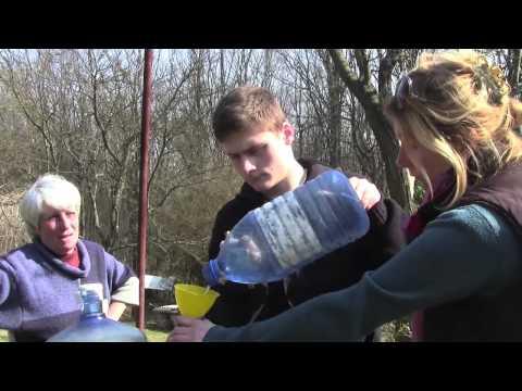 Как пить березовый деготь от псориаза