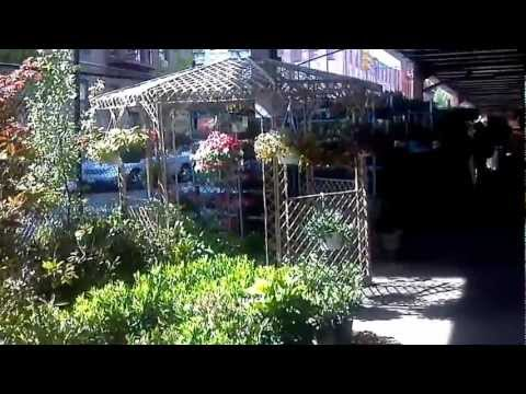 Welcome to Urban Garden Center - East Harlem - NYC