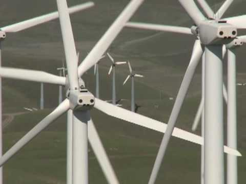Florida Man Installs Wind Turbine On His Property